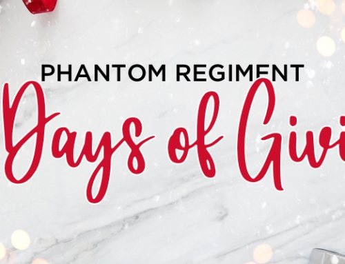 Introducing the 12 Days of Giving